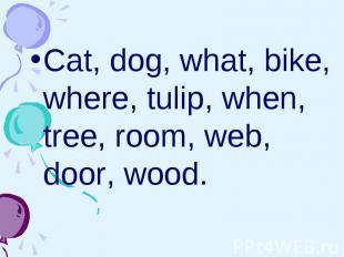 Cat, dog, what, bike, where, tulip, when, tree, room, web, door, wood. Cat, dog,
