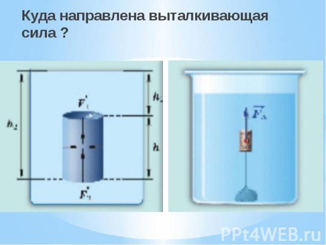 Куда направлена выталкивающая сила ? Куда направлена выталкивающая сила ?