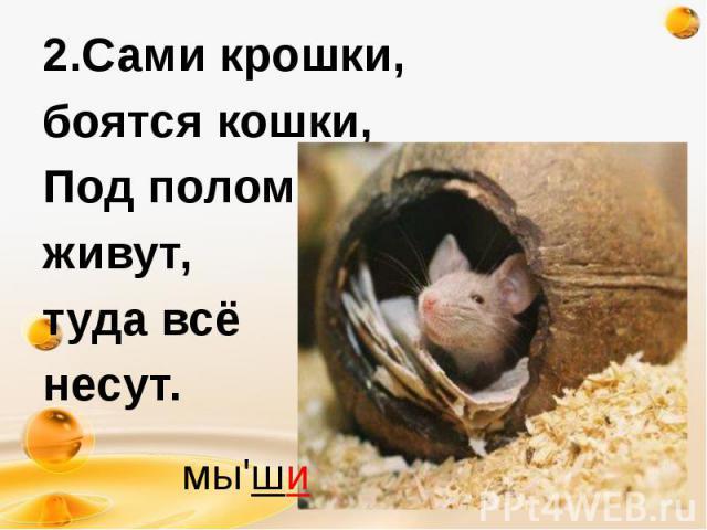2.Сами крошки, 2.Сами крошки, боятся кошки, Под полом живут, туда всё несут.