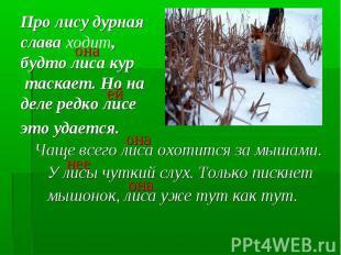 Чаще всего лиса охотится за мышами. Чаще всего лиса охотится за мышами. У лисы ч