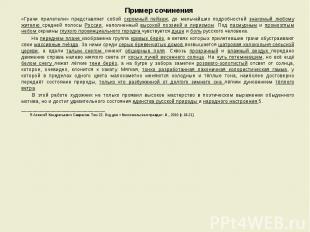Пример сочинения Пример сочинения «Грачи прилетели» представляет собой скромный