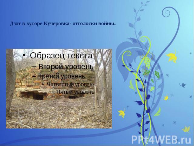 Дзот в хуторе Кучеровка- отголоски войны.