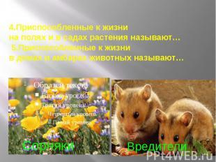 4.Приспособленные к жизни на полях и в садах растения называют… 5.Приспособленны