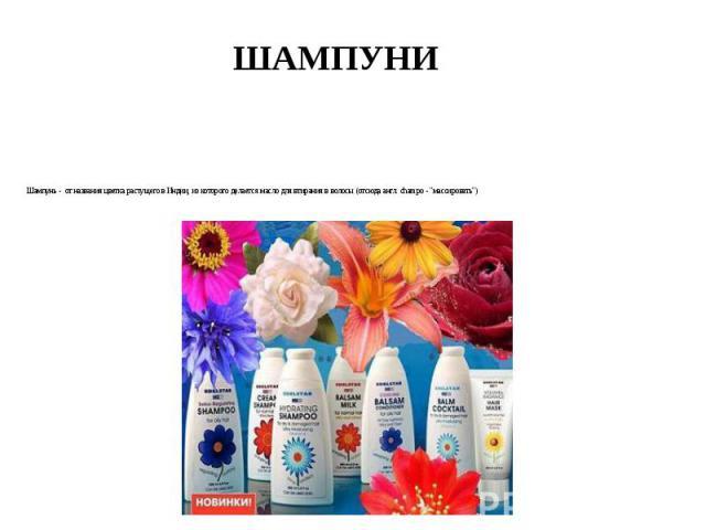 """ШАМПУНИ Шампунь - от названия цветка растущего в Индии, из которого делается масло для втирания в волосы (отсюда англ. champo - """"массировать"""")"""