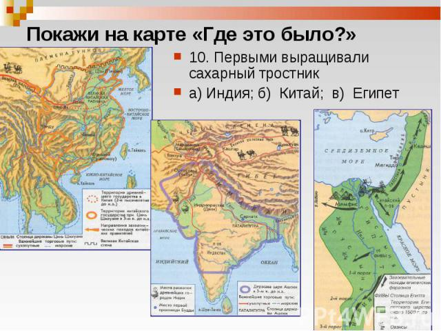 10. Первыми выращивали сахарный тростник 10. Первыми выращивали сахарный тростник а) Индия; б) Китай; в) Египет
