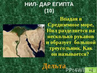 Впадая в Средиземное море, Нил разделяется на несколько рукавов и образует больш