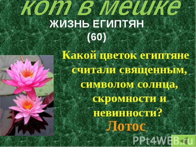 Какой цветок египтяне считали священным, символом солнца, скромности и невинности? Какой цветок египтяне считали священным, символом солнца, скромности и невинности?