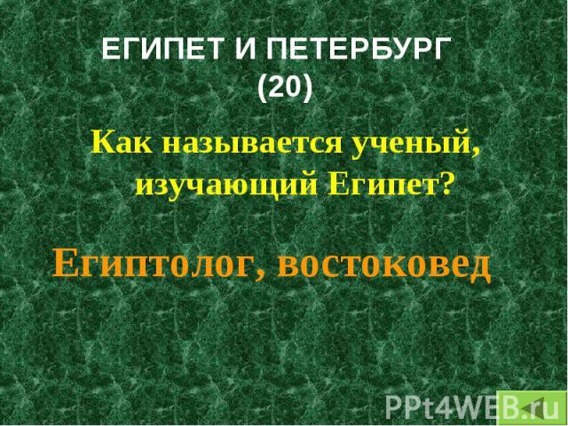 Как называется ученый, изучающий Египет? Как называется ученый, изучающий Египет?