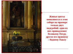 Живые цветы появляются в этом соборе на мраморе только двух надгробий: одно из н