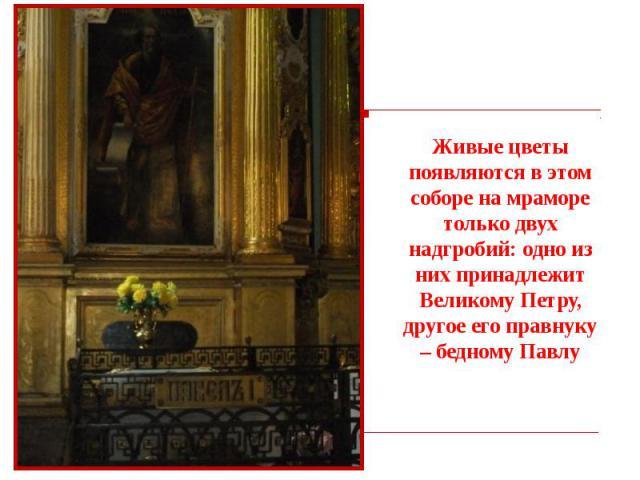 Живые цветы появляются в этом соборе на мраморе только двух надгробий: одно из них принадлежит Великому Петру, другое его правнуку – бедному Павлу