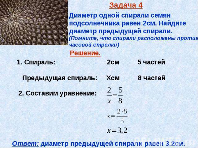 Задача 4 Диаметр одной спирали семян подсолнечника равен 2см. Найдите диаметр предыдущей спирали. (Помните, что спирали расположены против часовой стрелки)