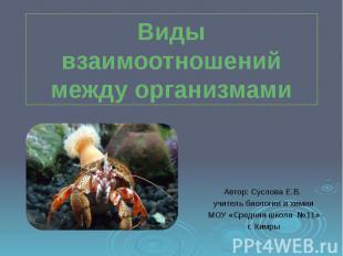Виды взаимоотношений между организмами Автор: Суслова Е.В. учитель биологии и хи