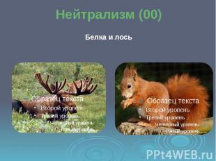 Нейтрализм (00) Белка и лось
