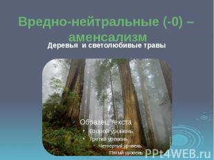 Вредно-нейтральные (-0) – аменсализм Деревья и светолюбивые травы