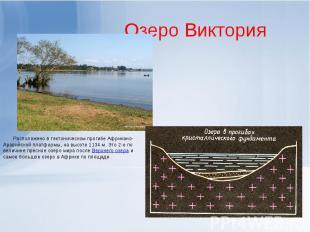 Озеро Виктория Расположено в тектоническом прогибе Африкано-Аравийской платформы