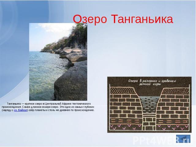 Озеро Танганьика Танганьика— крупноеозеров ЦентральнойАфрике тектонического происхождения. Самое длинное в мире озеро. Это одно из самых глубоких (наряду с оз.Байкал) озёр планеты и столь же древнее по происхождению.