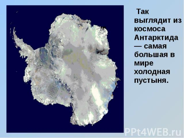 Так выглядит из космоса Антарктида — самая большая в мире холодная пустыня. Так выглядит из космоса Антарктида — самая большая в мире холодная пустыня.
