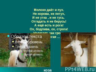 Молоко даёт и пух. Не корова, не петух, И не утка , и не гусь. Отгадать я