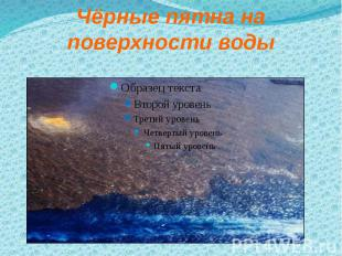 Чёрные пятна на поверхности воды