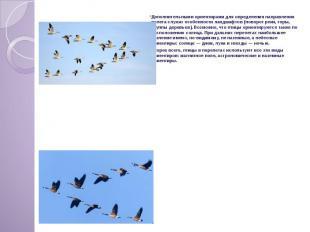 Дополнительными ориентирами для определения направления полета служат особенност