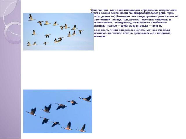 Дополнительными ориентирами для определения направления полета служат особенности ландшафтов (поворот реки, горы, группы деревьев). Возможно, что птицы ориентируются также по расположению солнца. При дальних перелетах наибольшее значение имеют, по-в…