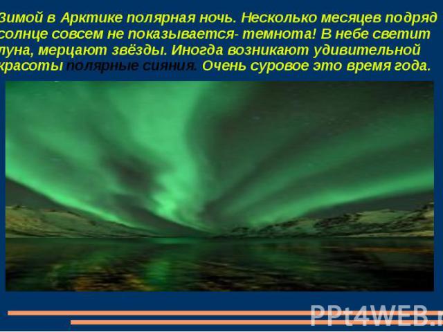 Зимой в Арктике полярная ночь. Несколько месяцев подряд солнце совсем не показывается- темнота! В небе светит луна, мерцают звёзды. Иногда возникают удивительной красоты полярные сияния. Очень суровое это время года.