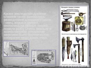 Кроме земледелия древние славяне также занимались разведением домашнего скота -