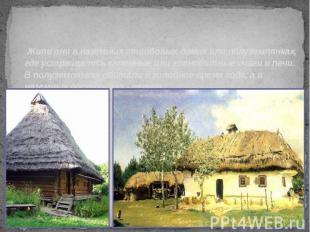 Жили они в наземных столбовых домах или полуземлянках, где устраивались каменные