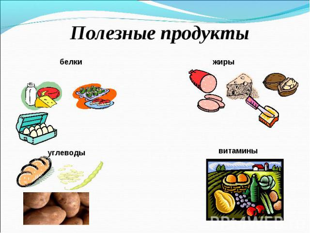 белки жиры белки жиры