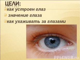 как устроен глаз как устроен глаз значение глаза как ухаживать за глазами
