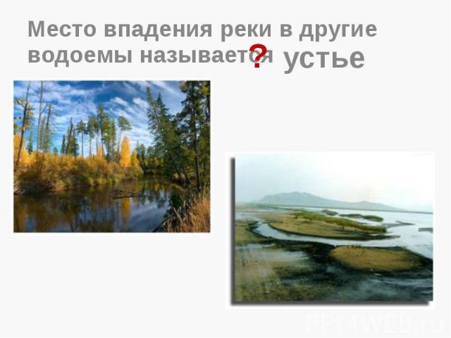 Место впадения реки в другие водоемы называется
