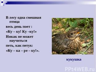 В лесу одна смешная птица В лесу одна смешная птица весь день поет : «Ку – ку! К
