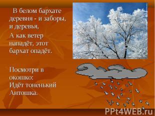 В белом бархате деревня - и заборы, и деревья, В белом бархате деревня - и забор