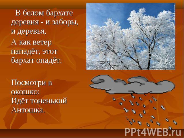 В белом бархате деревня - и заборы, и деревья, В белом бархате деревня - и заборы, и деревья, А как ветер нападёт, этот бархат опадёт. Посмотри в окошко: Идёт тоненький Антошка.