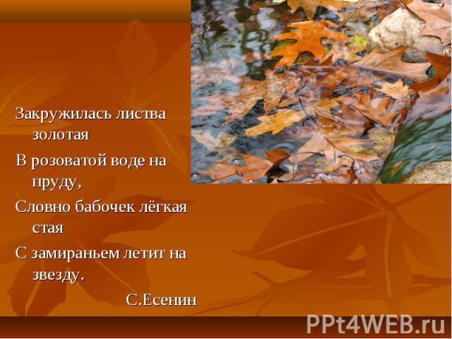 Закружилась листва золотая Закружилась листва золотая В розоватой воде на пруду, Словно бабочек лёгкая стая С замираньем летит на звезду. С.Есенин