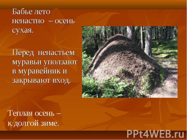 Бабье лето ненастно – осень сухая. Бабье лето ненастно – осень сухая. Перед ненастьем муравьи уползают в муравейник и закрывают вход.