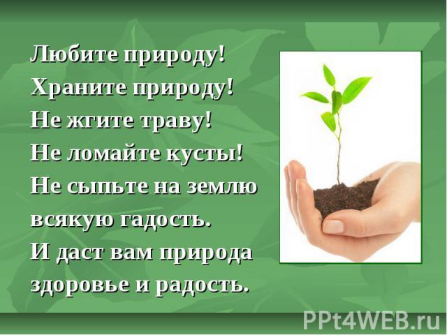 Любите природу! Храните природу! Не жгите траву! Не ломайте кусты! Не сыпьте на землю всякую гадость. И даст вам природа здоровье и радость.