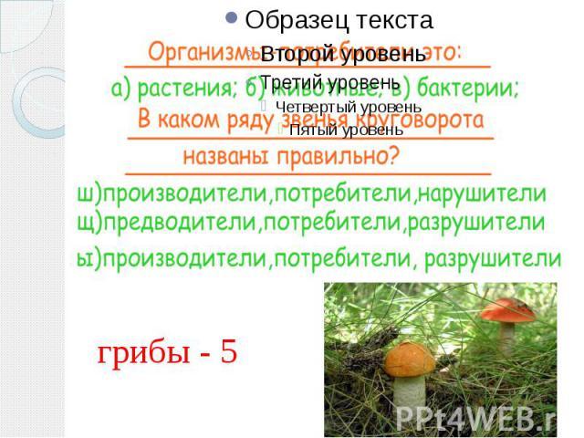 грибы - 5