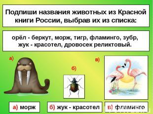 Подпиши названия животных из Красной книги России, выбрав их из списка: