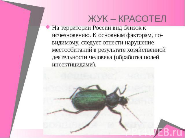 На территории России вид близок к исчезновению. К основным факторам, по-видимому, следует отнести нарушение местообитаний в результате хозяйственной деятельности человека (обработка полей инсектицидами).
