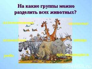 На какие группы можно разделить всех животных?