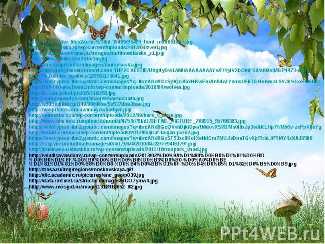 http://refdt.ru/tw_files2/urls_5/36/d-35499/35499_html_m7d651a3e.jpg http://refdt.ru/tw_files2/urls_5/36/d-35499/35499_html_m7d651a3e.jpg http://dni-rebenka.ru/wp-content/uploads/2013/04/zveri.jpg http://old.spas-extreme.ru/images/multimedia/eko_z1.…