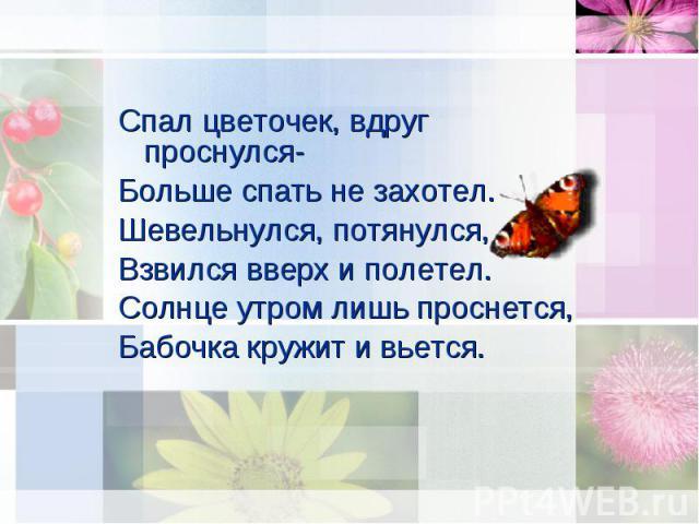 Спал цветочек, вдруг проснулся- Спал цветочек, вдруг проснулся- Больше спать не захотел. Шевельнулся, потянулся, Взвился вверх и полетел. Солнце утром лишь проснется, Бабочка кружит и вьется.