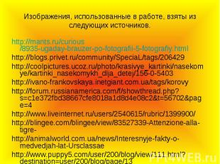 Изображения, использованные в работе, взяты из следующих источников. http://mant