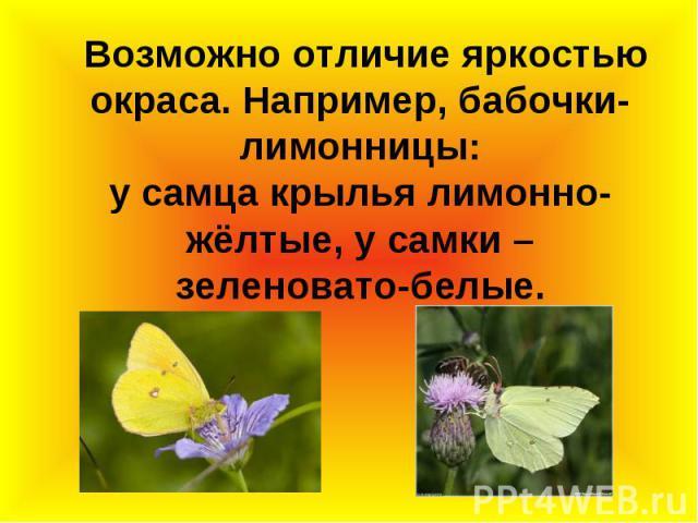 Возможно отличие яркостью окраса. Например, бабочки-лимонницы: у самца крылья лимонно-жёлтые, у самки – зеленовато-белые.