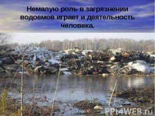 Немалую роль в загрязнении водоемов играет и деятельность человека.
