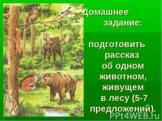 Домашнее задание: подготовить рассказ об одном животном, живущем в лесу (5-7 предложений).