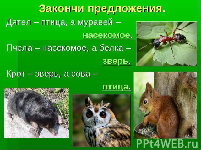Закончи предложения. Дятел – птица, а муравей – насекомое. Пчела – насекомое, а белка – зверь. Крот – зверь, а сова – птица.