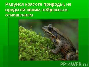 Радуйся красоте природы, не вреди ей своим небрежным отношением