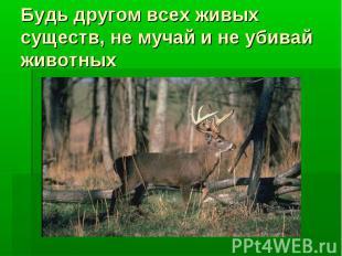 Будь другом всех живых существ, не мучай и не убивай животных